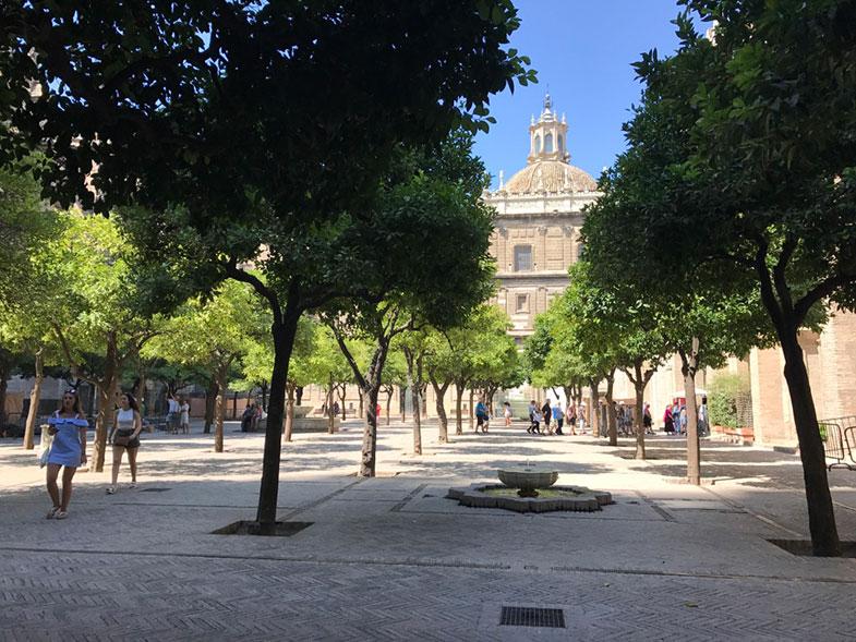 Pátio das Laranjeiras da Catedral de Sevilha