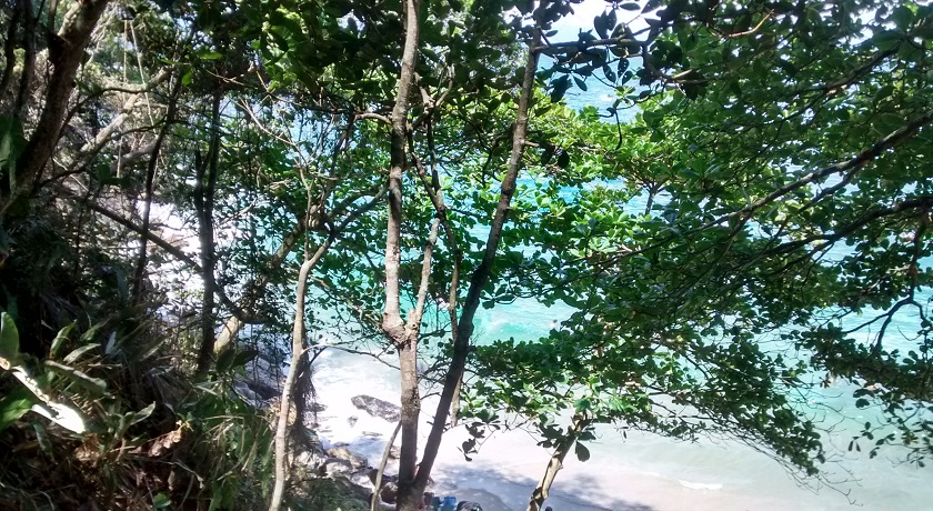 Praia Eden Guaruja - Vista Trilha