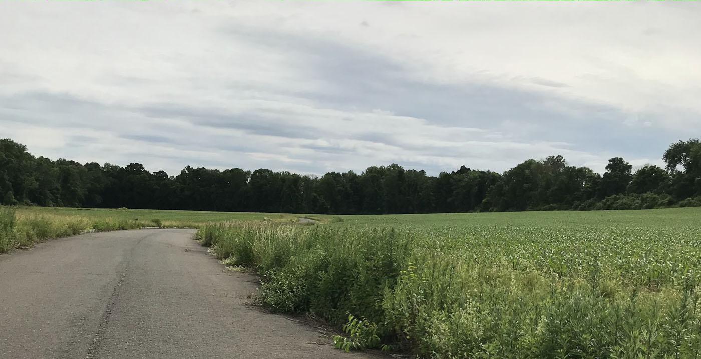 Chester, NJ land