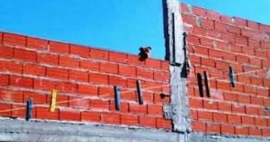 , Máximo Paz, partido de Cañuelas Pitbull  de  genética asesina se lanza de la terraza de su casa, para atacar a sus vecinos, Cañuelas Noticias de Argentina