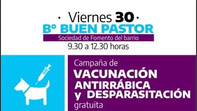 Cañuelas: Operativo de vacunación antirrábica en el barrio Buen Pastor.