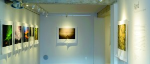"""Entering """"Rend"""" at Michael Weil's Foothill Galleries. PHOTO 