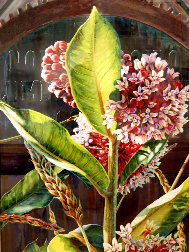 """""""Milkweed at the Lumber Mill"""" by Mary Lou Ferbert (2001); transparent watercolor on board, 56½ x 44½ inches."""