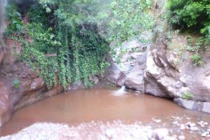 Vasque d'eau dans le canyon de Tazitounte dans le région de Marrakech