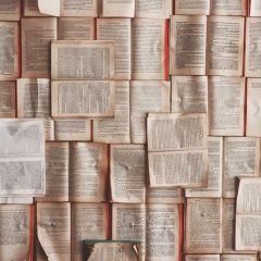 Una demorada conversación sobre libros
