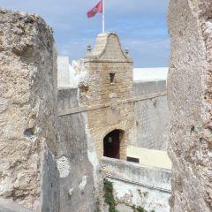 Adopta un Monumento: más de 200 alumnos enamorados del patrimonio
