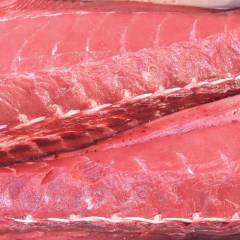 Un ronqueo de atún a principios del siglo XX