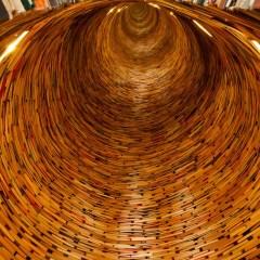 Un mundo sin libros o cómo sobrevivir a la desmemoria