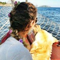 20 fatos importantes que todo dono de cachorro jamais deve esquecer