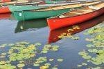 sharon schindler photography - canoes on the charles