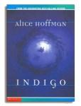 Alice Hoffman Indigo at capabilitymom.com