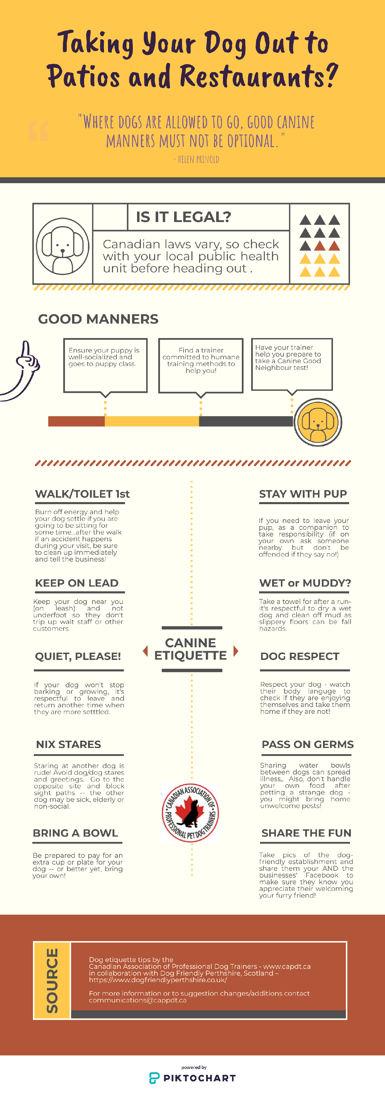 Taking Your Dog Out to Patios and Restaurants Infographic - showing various tips