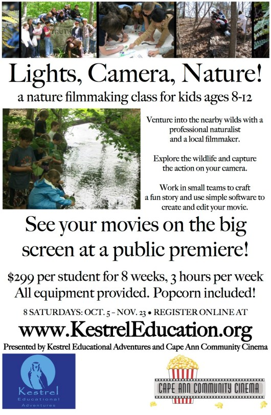 Learn more about this and other Kestrel programs.