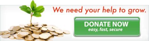 donate-banner