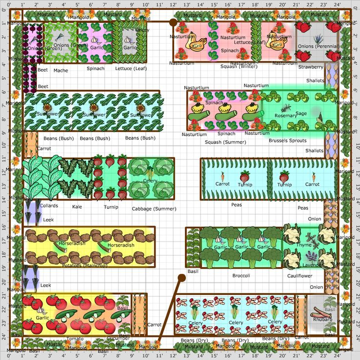 Gardening Tips Week 1: Planning Your Plot - The Cape ... on Backyard Layout Planner id=41592