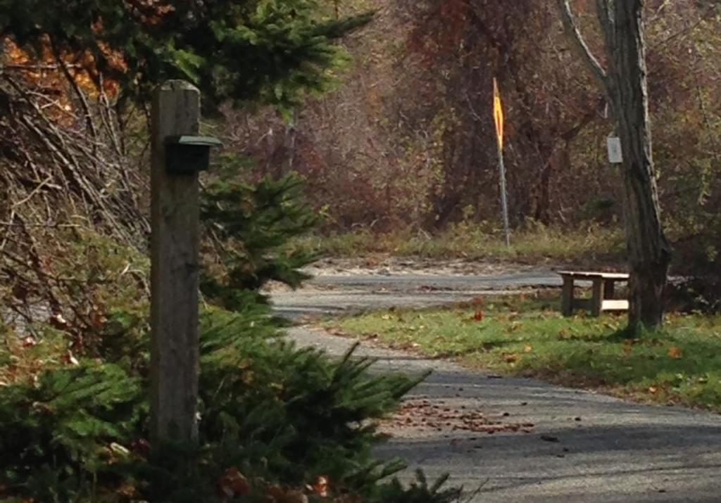 Driveway Trespass Alarm
