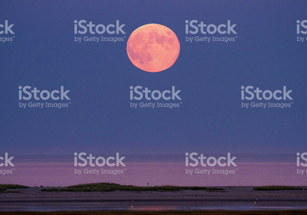 MoonRise over Fort Hill ©CapeCodSoul iStock