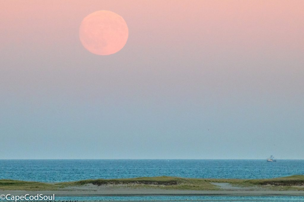 Harvest Moon Rise, Cape Cod 2017