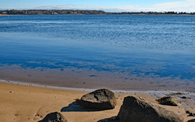 Three Bays Stormwater Project – an introduction