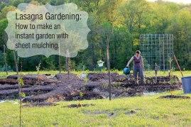 lasagna-garden-pic