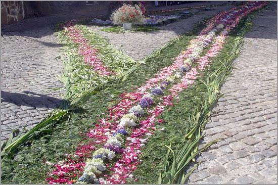 Tapete de Flores na Rua -Capeia Arraiana