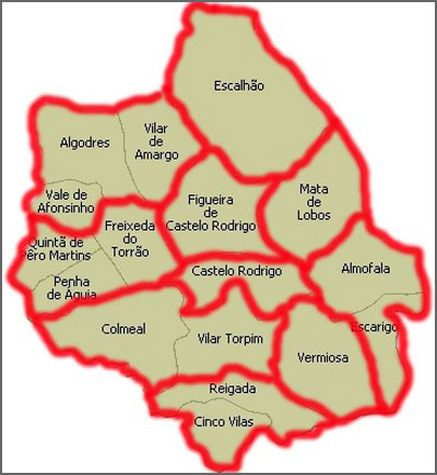 Divisão Administrativa de Figueira de Castelo Rodrigo (2013)