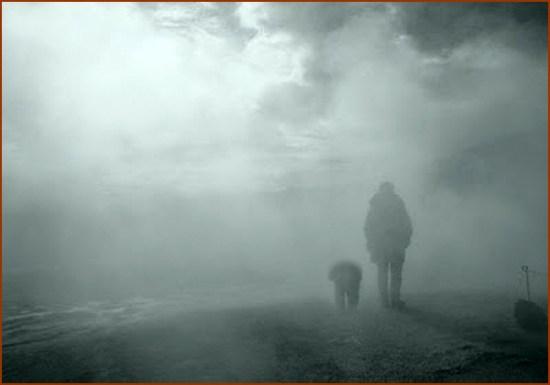 para lá do desdém humano ainda fica a fidelidade canina