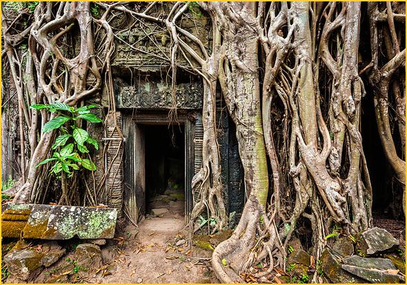 Templo Ta Prohm; e Porta Sul do Templo Angkor Thom