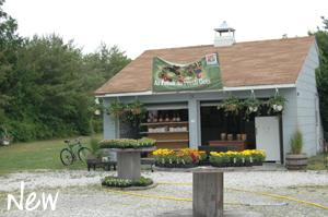 new-farmersmarket
