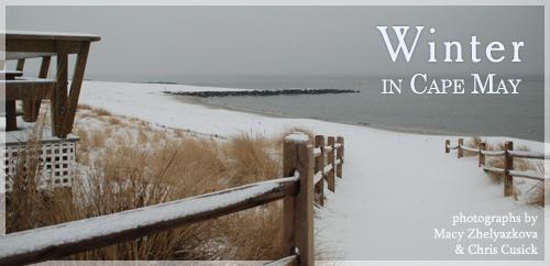 winter-header