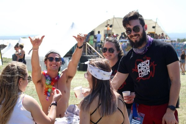 Rocking the Daisies (Image: Supplied)