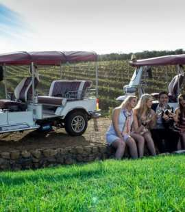 Tuk Tuk Stellenbosch (Image: Supplied)