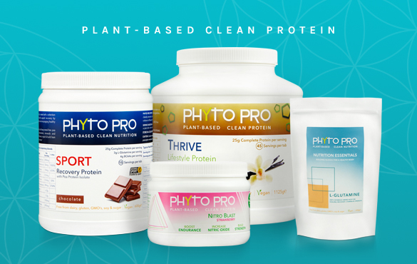 phyto pro cape town vegan christmas