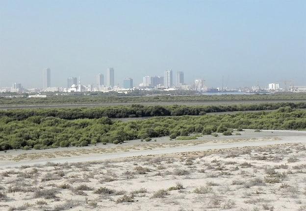 Umm al-Qaivine