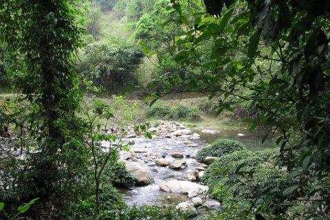 Suối đầu nguồn ( Pác Bó, Cao Bằng )   Mapio.net