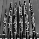 My clarinets
