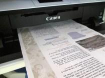 Cardinaux-01