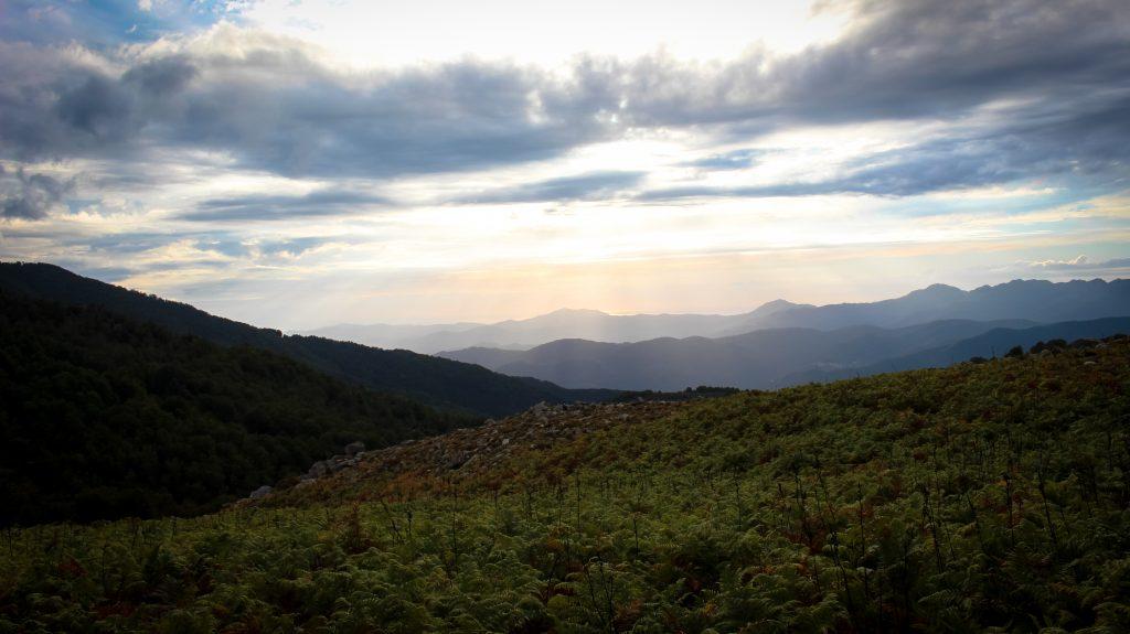 paysage-corse-matin