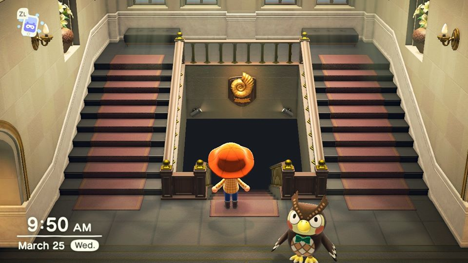 museo animal crossing