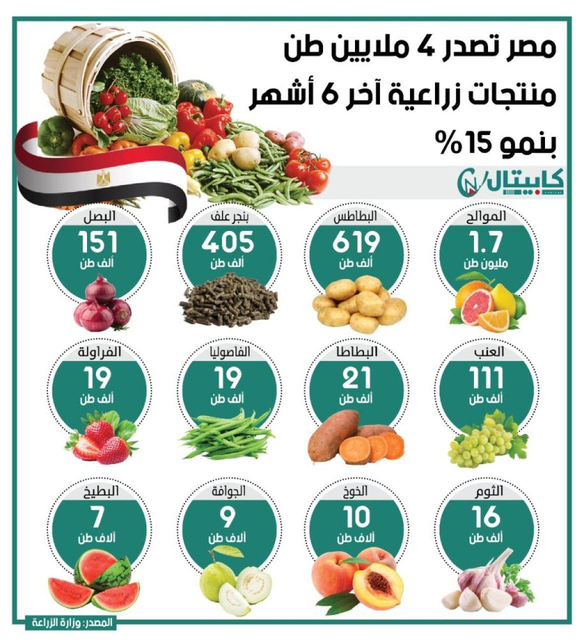 مصر تصدر 4 ملايين طن منتجات زراعية آخر 6 أشهر