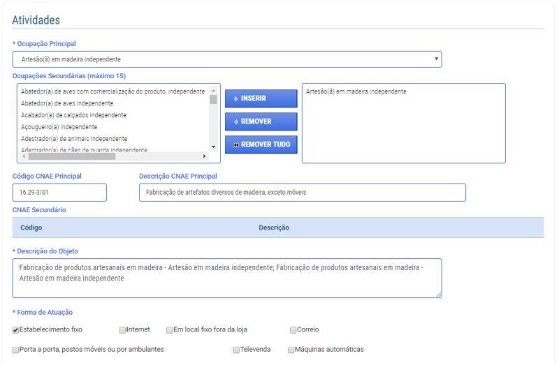 Formulário de Cadastro - CNAEs
