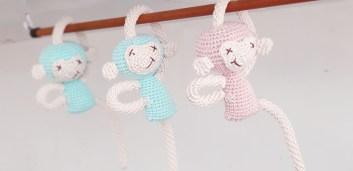 capitanne_crochet_singe_moqueur