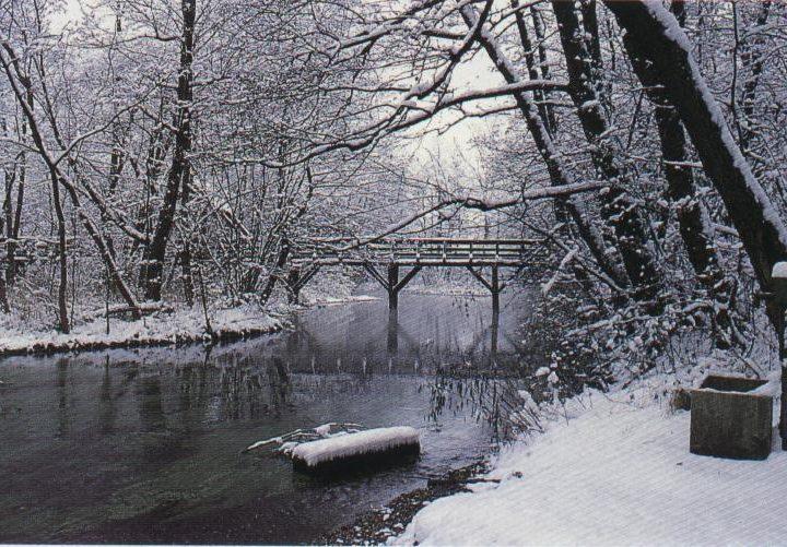 inverno-as-caracteristicas-da-estacao-mais-fria
