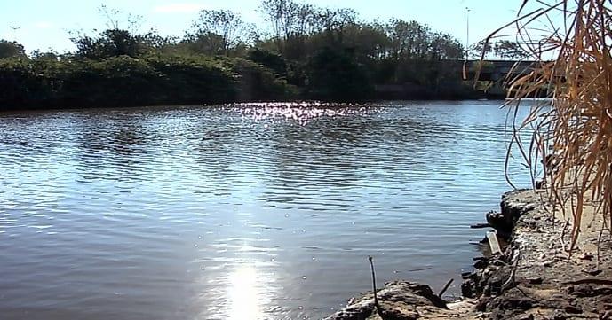 Vazão do Rio Jucu cai e aumenta risco de novo racionamento na Grande Vitória
