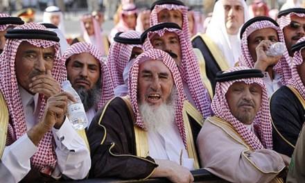 Arapi u Hercegovini