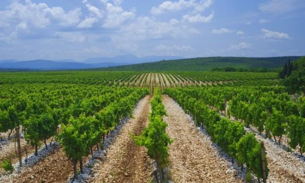 Zapadnohercegovačkoj županiji milijun KM za poljoprivredu, a HNŽ-u samo 80.000 KM