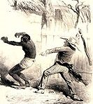 Black slave bitten
