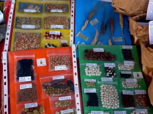 Catalogazione di fagioli ad opera di Seed Vicious