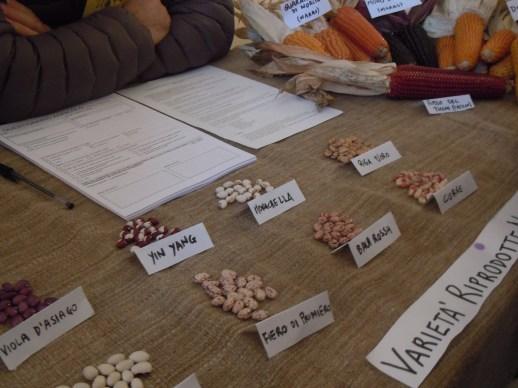 Selezione di fagioli del gruppo Coltivare Condividendo