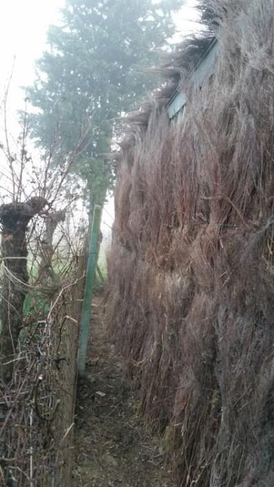 Particular of Hut Brooms